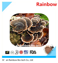 Hot selling yunzhi mushroom with low price