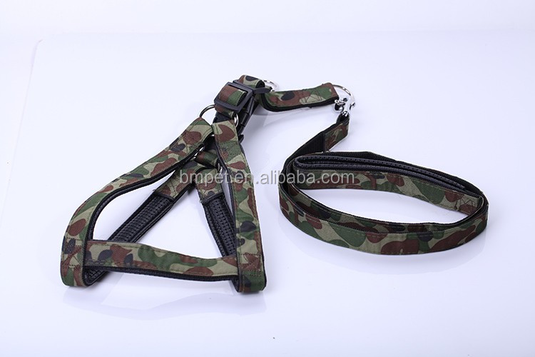 Durable Dog Leash and Harness Set for Large Dog
