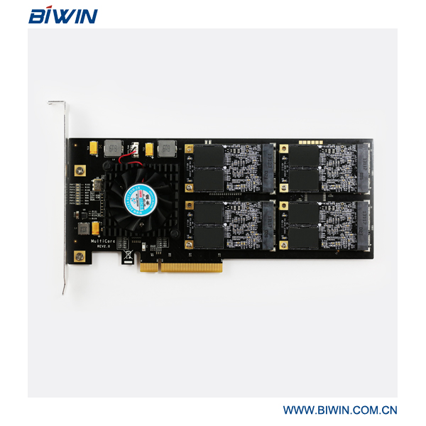 190*83.4*20mm PCIe 2.0 series 1TB SSD for server/PC