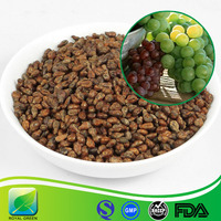 Anti-aging Beauty Plant Extract Grape Seed P.E.