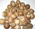 WHOLE WHITE DRIED SUPARI/ARECA NUTS
