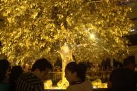 Guangzhou favorable price artificial oak tree 5-45m steel palm tree