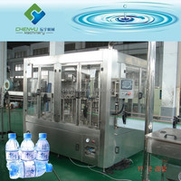 Automatic PET Bottle Mineral Water Plant Cost
