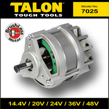 7025 36V BLDC Brushless Motor