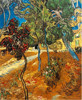 Trees in the Asylum Garden by Van Gogh landscape painting
