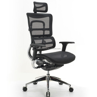 Modern appearance colorful aeron office ergonomic mesh chair IH700