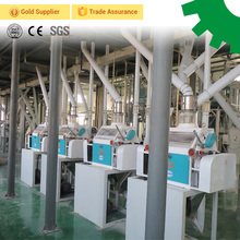 20 ton per day corn maize seeds green lentil processing plant cleaning peeling splitting packing machine production line