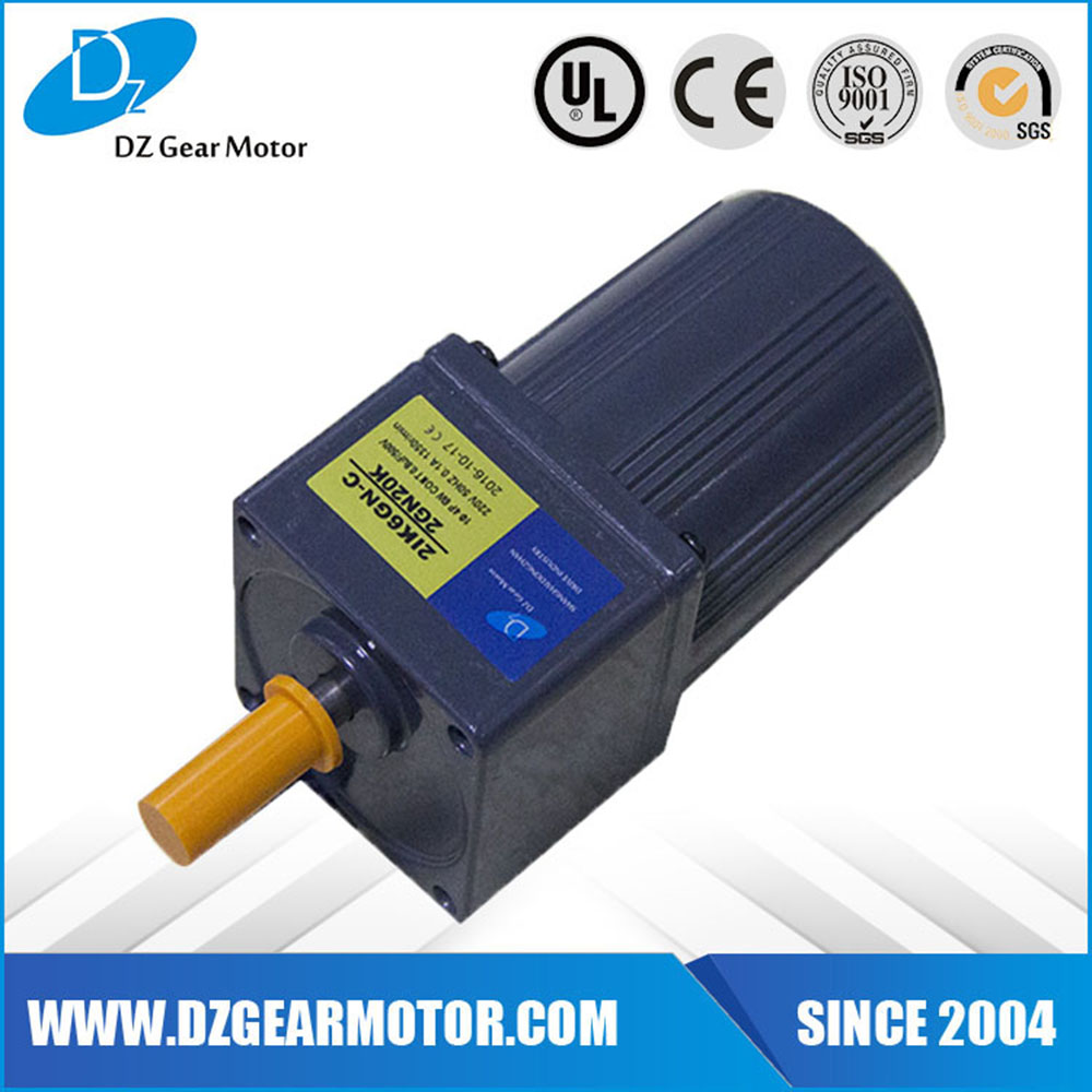 6W Micro Size Induction Motor Prices