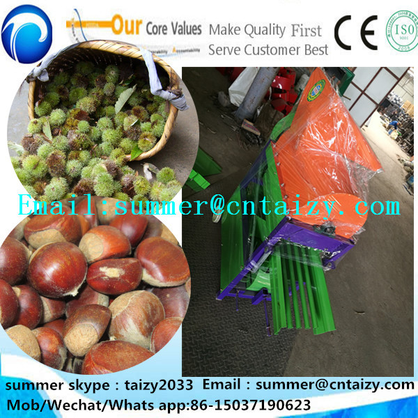 Chinese chestnuts sheller Castanea mollissima hulling machine