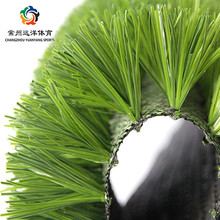 Chinese International plastic turf with good quality for indoor soccer field Artificial Grass