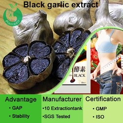 Chinese fermented black garlic extract/black garlic extract/fermented black garlic