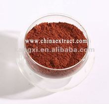 2012 GMP Reishi plant base Top quality lingzhi extract powder (10:1) for health food for the elder