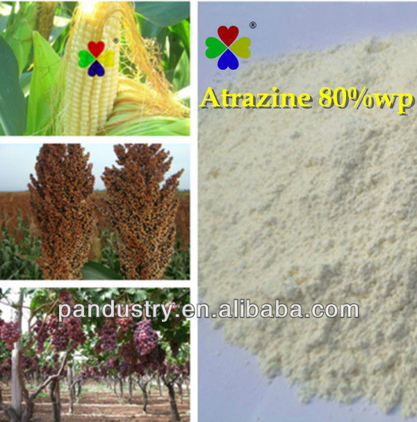 High efficient Selective herbicide Atrazine 80% wp