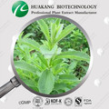 China Stevia Steviosides Extract Alibaba Supply