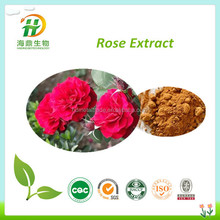 manufacturer Rose extract/2014 new fresh Rose powder