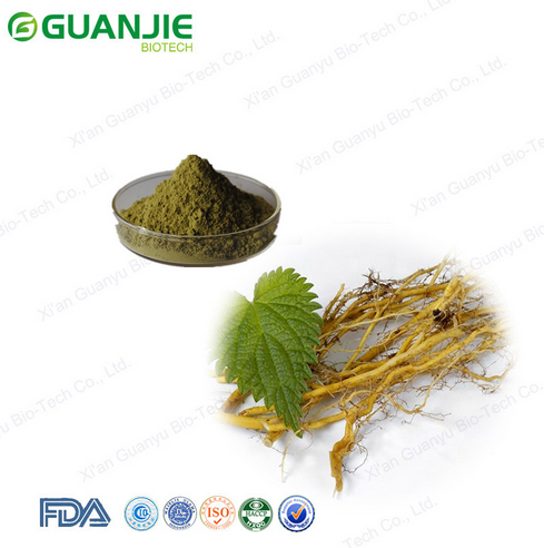 ISO Manufacturer Wholesale Nettle Root Extract Price