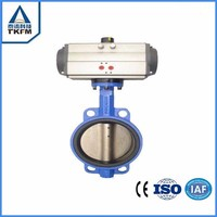 Online shop alibaba supply wafer type worm gear operated 1 inch butterfly valve