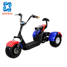 1000W 60V Electric Tricycle 3 Wheel Electric Scooter Fat Tire City Coco