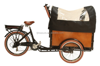 three wheel food delivery trike cargo bike with roof