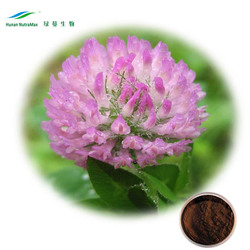 Supply High Quality red clover extract 40% isoflavone