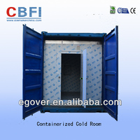 container cold room walk in freezer for vegetables, fruits, chicken and fish storage