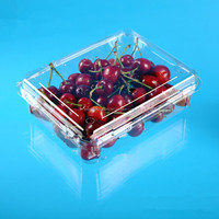 custom clear disposable plastic fruit boxes