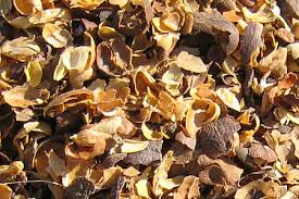 COFFEE SHELL HUSK_CHEAP PRICE