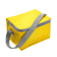 Promotional Reuse commercial wholesale insulated cooler bags