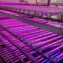High Brightness 1.2m 18W T8 integrated Tube LED Grow Light