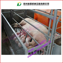 durable galvanized steel pig fence/Sow Crate/Farrowing Pen for Sale