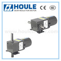 Houle motor 6W liner type gear reduction motor single phase AC electric motor
