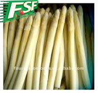 wholesale price for frozen fresh white asparagus 2016 new crop