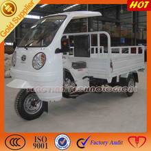 Popular type for three wheeled motorcycle with ABS canvas cargo