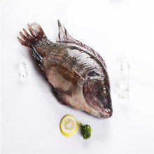 New Arrival Hot Seafood Frozen Fish Moon Cut Tilapia
