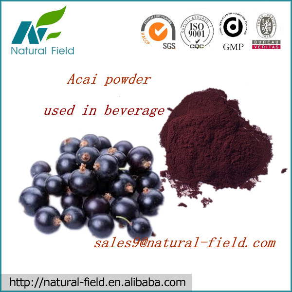 acai berry powder extract with high quality and best price