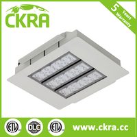 Five years warranty CKRA lighting warm white/cold white meanwell driver 80w gas station led canopy light