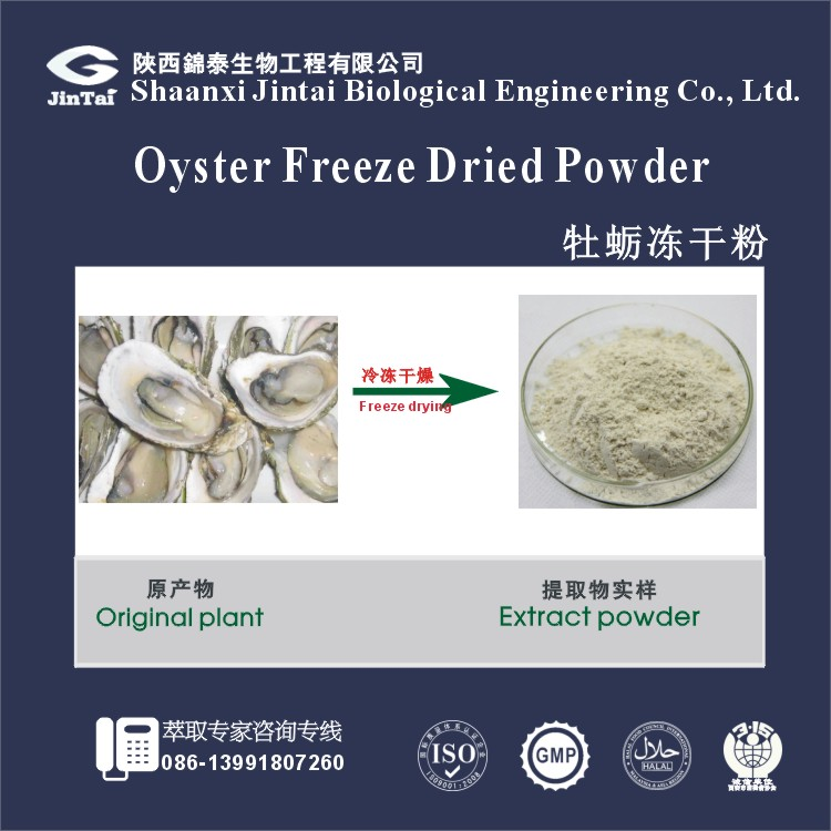 natural meat or shell lyophilized oyster powder