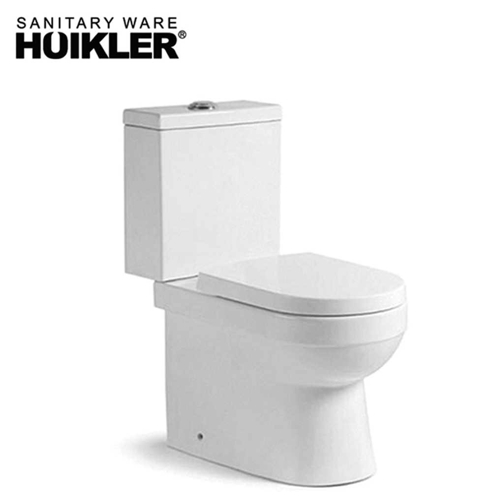 Ceramic dual flush washdown two piece toilet bowl
