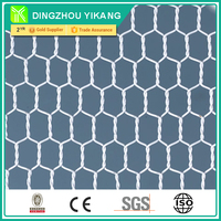 hexagonal wire mesh big supplier in China