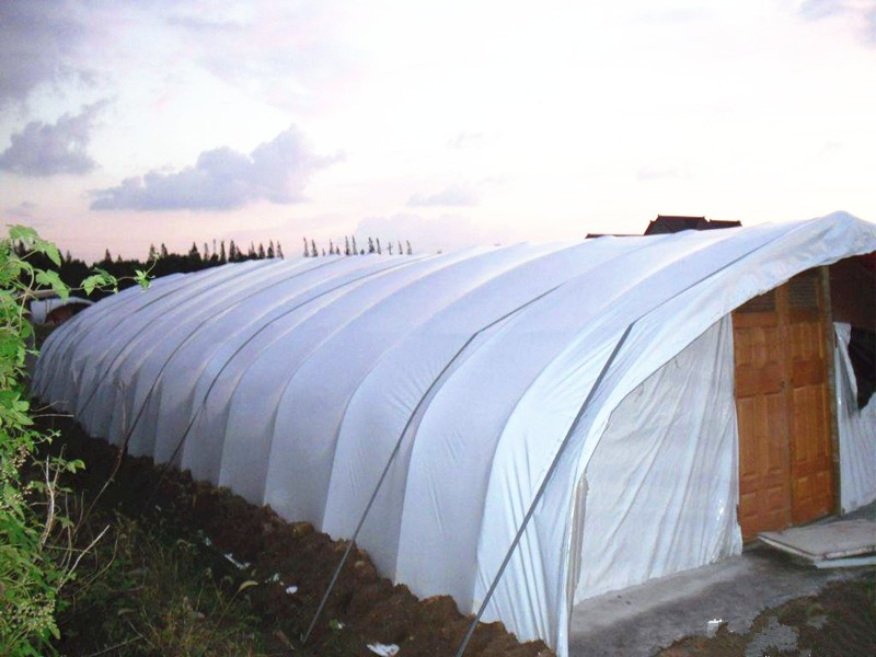 100% new LDPE green house plastic clear covering film,anti drip tomato Hydroponics agricultural plastic film