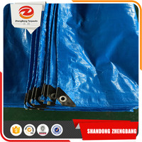 Durable outdoor insulated woven coated PE tarpaulin Sheet