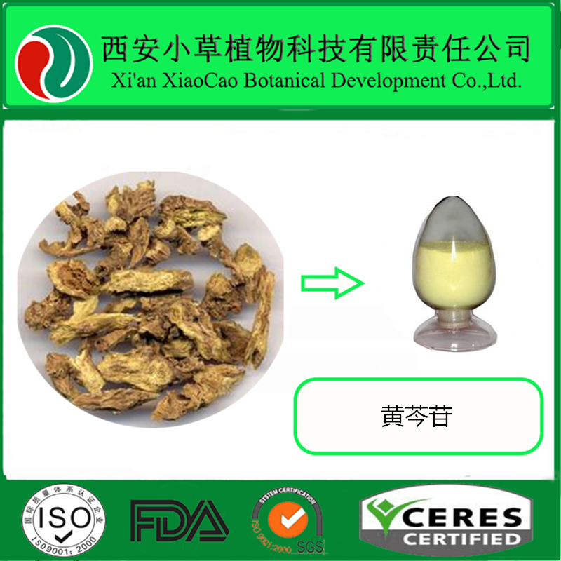 100% Natural Scutellaria Root Extract Baicalin 85% CAS NO.: 94279-99-9