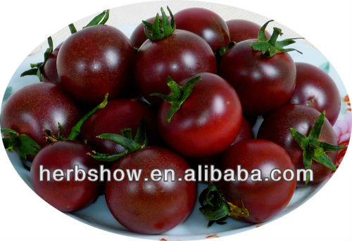 Hybrid tomato seeds for sale