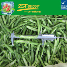 frozen healthy canned french green bean cut