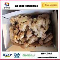 varieties of chinese mature ginger