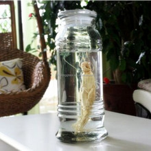 5L New arrival factory directly selling glass Ginseng/wine making jar