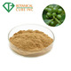 Best quality free sample green coffee bean extract powder with 30% Chlorogenic Acid