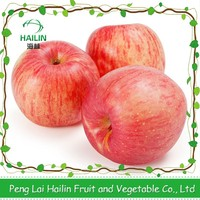 Professional Delicious High Quality Fresh Red Apple