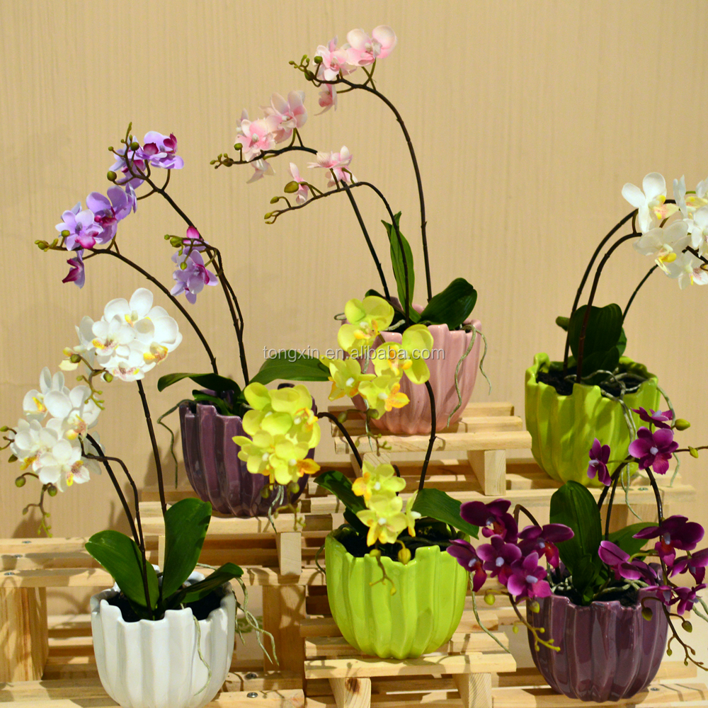 artificial real touch orchid with ceramic pot factory direct wholesale