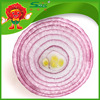 Fresh Onion purple & yellow type onions high quality oniond on sale